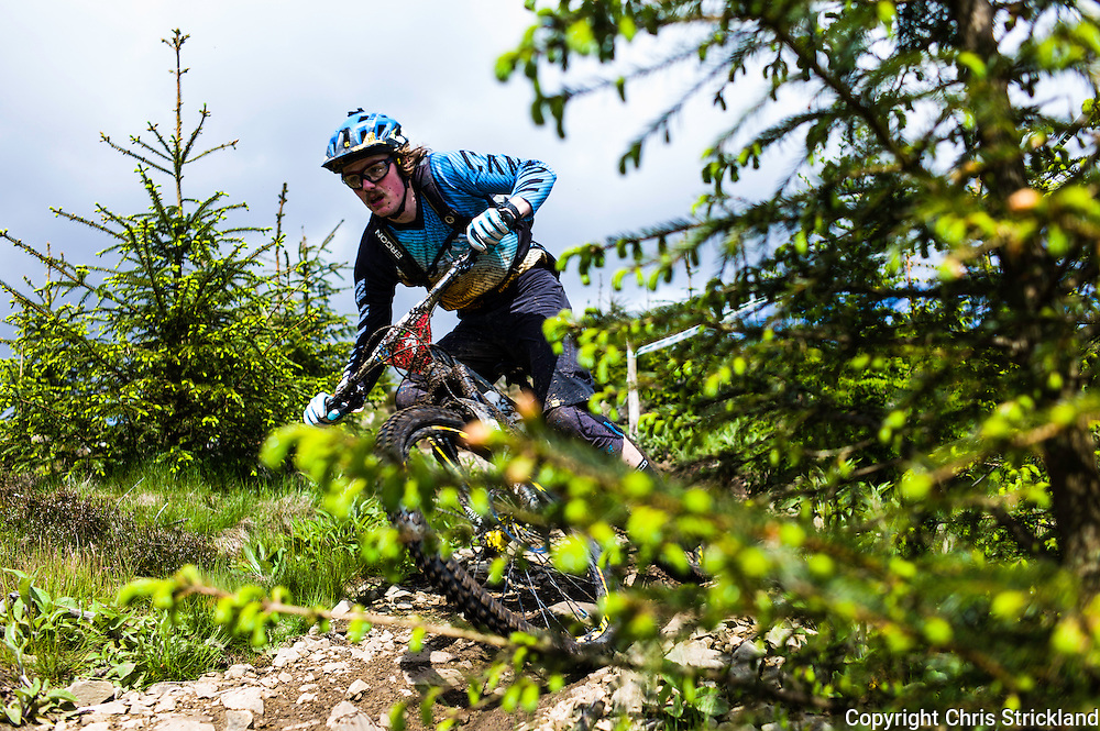 Glentress, Peebles, Scotland, UK. 31st May 2015. Joe Barnes in action at The Enduro World Series Round 3 taking place on the iconic 7Stanes trails during Tweedlove Festival. Mountain bikers come up against eight stages across two days, with an intense 2,695 metres of climbing over 93km. As well as the physicality of the liaisons, the stages themselves are technical, catching many off guard.