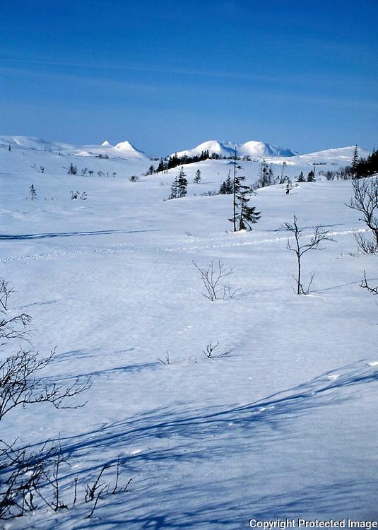 Tjohkele, eller Lurusneisa, er hellig fjell for sørsamene i Låarte Sijte/Luru reinbeitedistrikt. Midt i sørsamenes rike ligger Tjohkele, et hellig fjell som gikk i arv fra en generasjon reineiere til den neste. Her sett fra Lierne. Tjohkele is a holy mountain for the sami people.