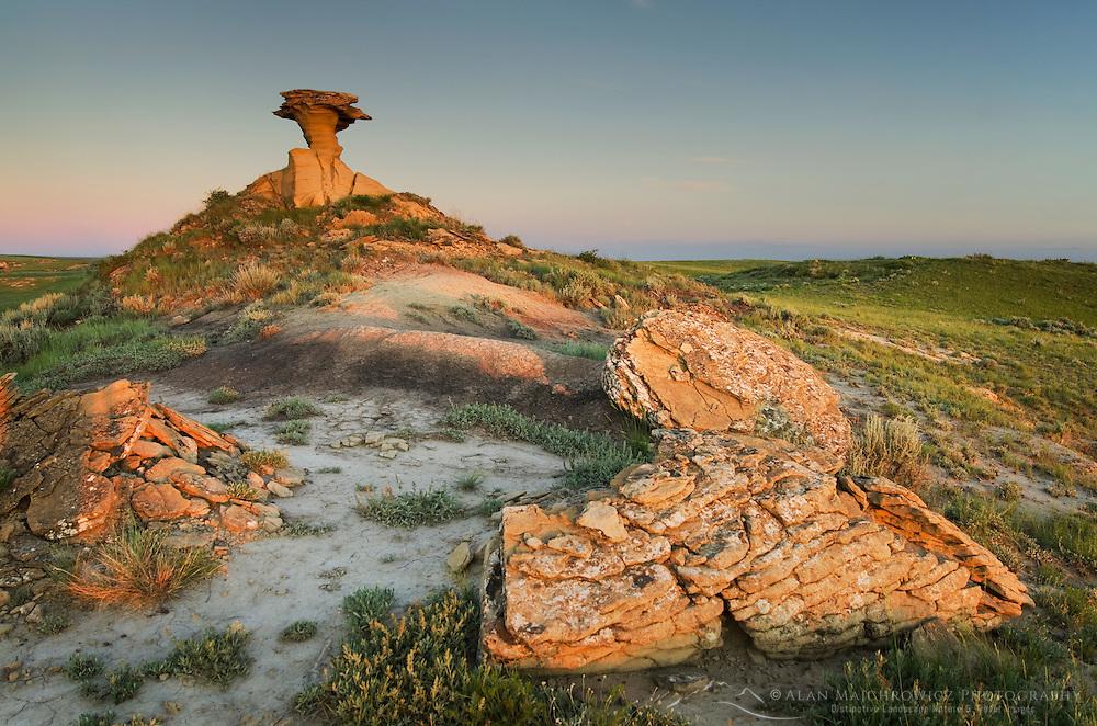 Sandstone hoodoo near Hell Creek Montana