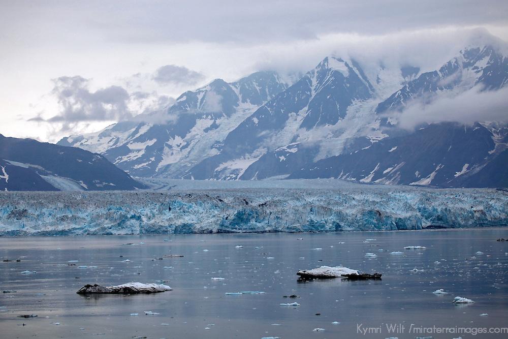 North America, USA, Alaska.  Hubbard Glacier, an advancing tidewater glacier popular for viewing from cruiseships.