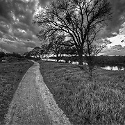 Running Path along the east bluffs of Lake Natoma, Folsom, CA