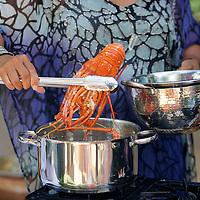 TV Series -  Kriol Kitchen 2 -Stills