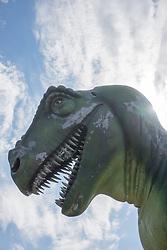 dinosaur head against the sky