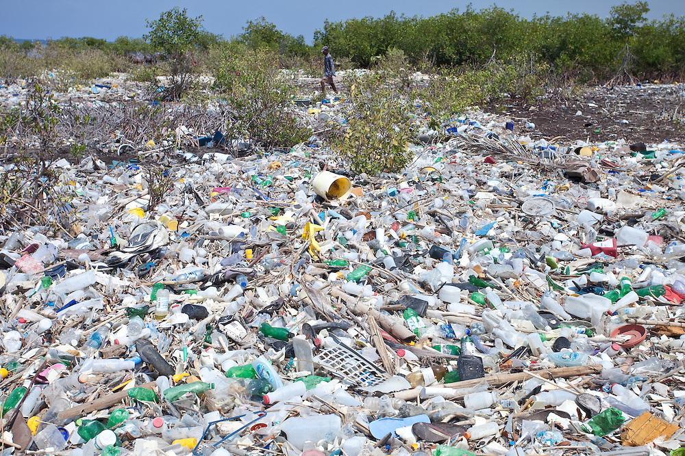 Piles of trash accumulate around mangrove on the north coast of Ile de La Gonave, Haiti