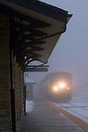 Cutting through thick fog, Amtrak's Texas Eagle speeds through downtown Lemont, IL.