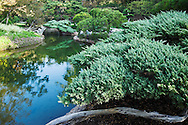 Pond in Japanese Garden at Huntington Botanical Gardens, San Marino, California