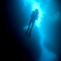 """A scuba diver is seen from below in """"spooky channel"""", one of the signature dives on the Honduran island of Roatan."""