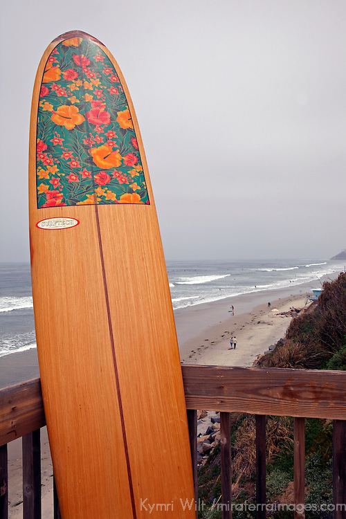 Woman's longboard upright with beach and waves in background.
