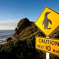 New Zealand, South Island, Punakaiki, Penguin Crossing sign along coast road in Paparoa National Park on summer evening
