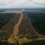 Feb 20th, 2006. Flight from Manaus to Santarem.  Huge area of 1645 hectares (Gleba do Pacoval area 100km SE of Santarem) illegally logged to plant soy. The biggest illegal logging in Para State in the last 7 years.