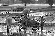 Rural Cambodia_2009