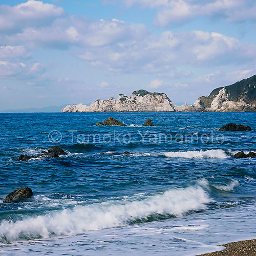 Viewed from a small beach below the cliff, the limestone in the white cape is whiter in the afternoon sun than right after sunrise.  This marine landscape of Shirasaki was shot in the wintertime, January to be exact, dispite a summery look. Many clouds in the sky and darker rocks in the water in front of the beach is in contrast with the white of the limestone rocks.  Waves, whichs are crushing in the foreground beach are making white splashes giving contrast to the navy blue water.