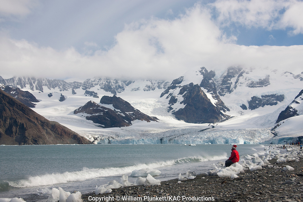 Person looking across Royal Bay to the Ross Glacier, Royal Bay, South Georgia Island