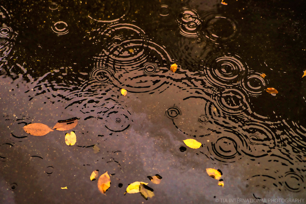 OCTOBER 17th:  Smiling Ripples