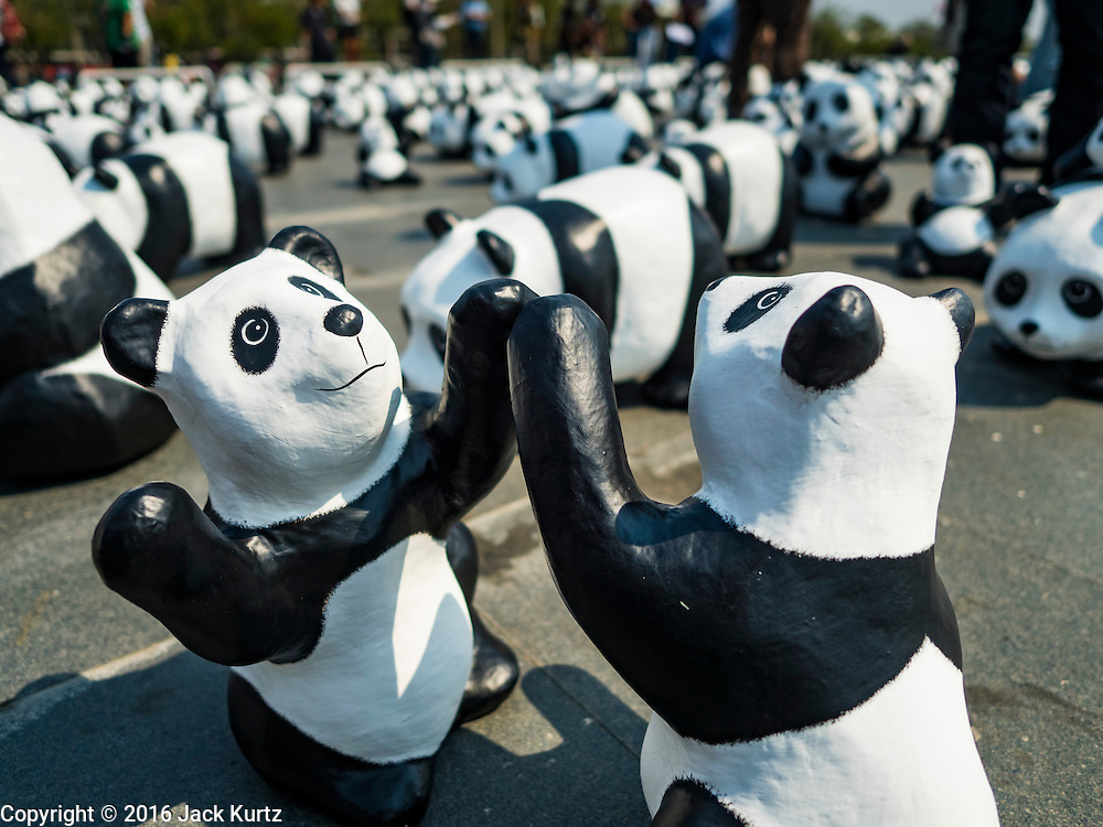 """04 MARCH 2016 - BANGKOK, THAILAND: Some of the 1600 paper maché pandas in the """"1600 Pandas+ World Tour in Thailand: For the World We Live In and the Ones We Love"""" exhibit on Sanam Luang in Bangkok. The 1600 paper maché pandas, an art installation by French artist Paulo Grangeon will travel across Bangkok and parts of central Thailand for the next week and then will be displayed at Central Embassy, a Bangkok shopping mall, until April 10. The display of pandas in Thailand is benefitting World Wide Fund for Nature - Thailand and is sponsored by Central Embassy with assistance from the Tourism Authority of Thailand and Bangkok Metropolitan Administration and curated by AllRightsReserved Ltd.     PHOTO BY JACK KURTZ"""