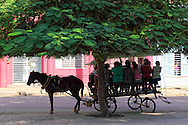 Horse and wagon in Guines, Mayabeque Province, Cuba.