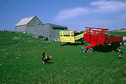 Tractor trailers in farmers field, Donegal, Ireland, April 2004