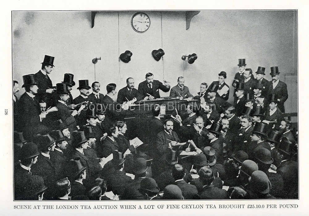 Scene at London Tea Auction. 7th May 1891<br /> <br /> From &quot;All About Tea&quot; by Uckers