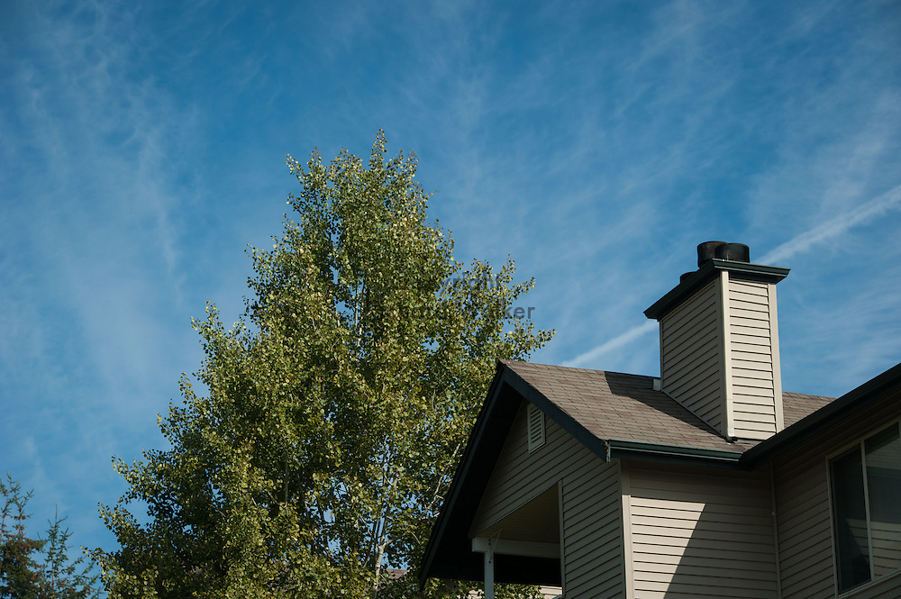 2016 September 29 - Tree with leaves against a lightly cloudy blue sky with rooftop and chimney. Puyallup, WA, USA. By Richard Walker