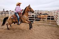 Barrel Racing, begins run, Rocky Boy Rodeo, Rocky Boy Indian Reservation, Montana