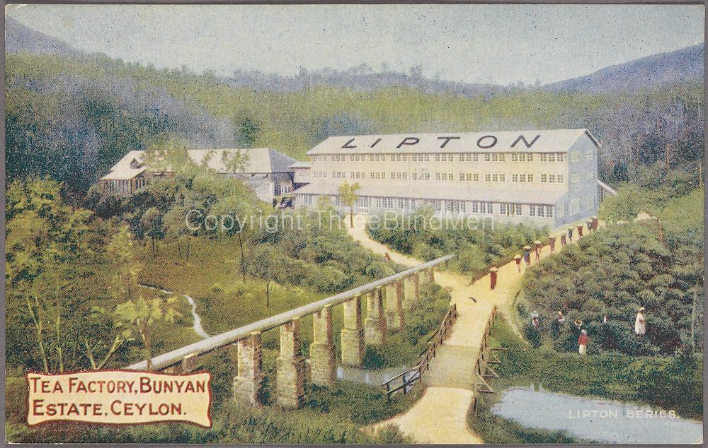 Tea Factory, Bunyon Estate. circa 1908. Ceylon.