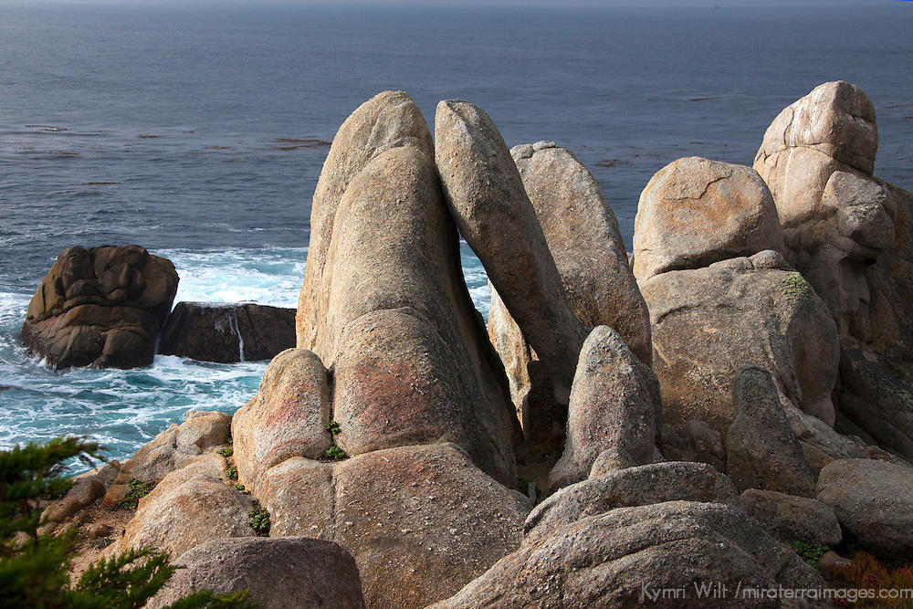 USA, California, Monterey. ROck formations along 17-Mile Drive at Ghost Tree stop.