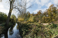 Blaricum, Bosje van Six GNR, Noord Holland, Netherlands