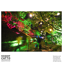 The gardens are lit up at Wellington's Summer City festival, in the Botanic Garden.  <br />
