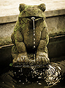 A statue of a frog welcomes visitors to Ketut Liyer's home, of Eat, Pray, Love fame, in Ubud, Bali, Indonesia.