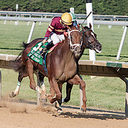 Sheer Drama wins the 78th running of The Delaware Handicap Saturday, July 18, 2015, at Delaware Park Race Track in Newark, DEL.  <br /> <br /> The Delaware Handicap is for Fillies and Mares three years old and upward and the winner is rewarded $750.000