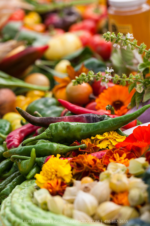 The vegetable garden - Heirloom Vegetable Harvest Table Greenfuse Photos
