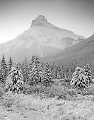 Mountain Portfolio III