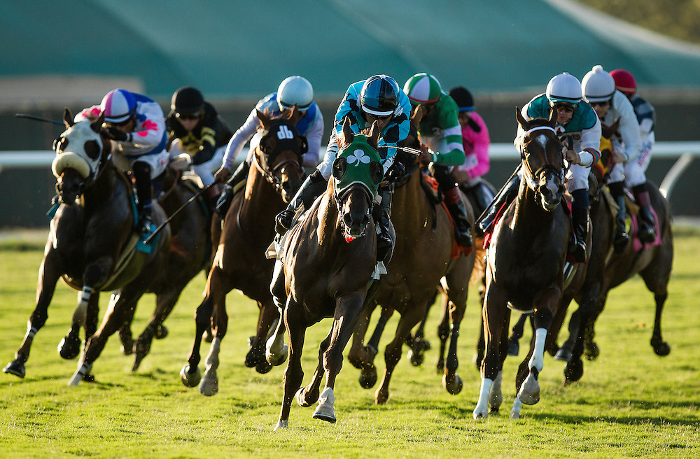 July 24 2015: Turf Racing Action  at Del Mar Race Course in Del Mar CA. Alex Evers/ESW/CSM