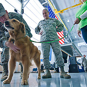 10/16/11 New Castle DE: Captain Marlon Burt (Left) plays with Sammy from Paws for People Sunday, Oct. 16, 2011 at the Delaware Air National Guard base in New Castle Delaware...The event recognize the Airmen after they have completed missions in various locations in Southwest Asia, Europe, Afghanistan....The News Journal/SAQUAN STIMPSON
