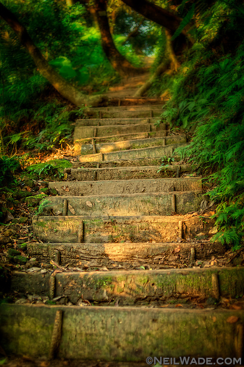 A hiking trail leds off into the forested mountains near Xindian, Taiwan.