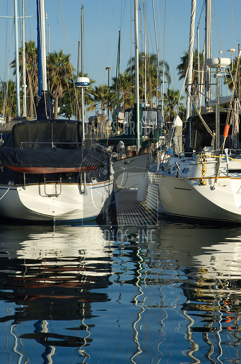 Boats moored in a tropical harbor