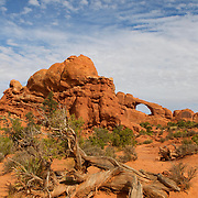 Skyline Arch is visible above the desert landscape of Arches National Park, located near Moab, Utah. Skyline Arch has a span of 69 feet (21 meters). It doubled in size, reaching its present size, in a single rockfall in 1940.