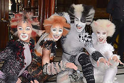 Cast of Cats attend Cats Photocall at The London Palladium, Argyll Street, London on Monday 7 July 2014
