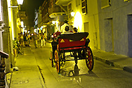 Horse Drawn Carriage Ride, a unique way to explore the city.