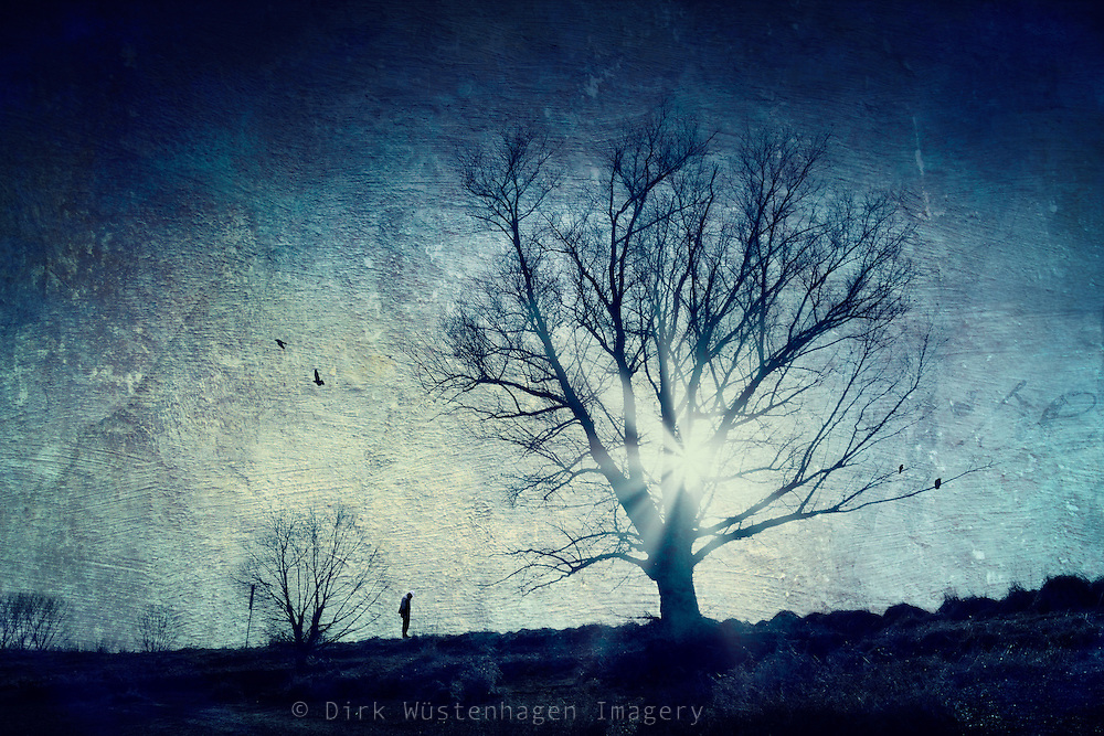 Silhouettes of a tree, a man and birds in backlight.<br />