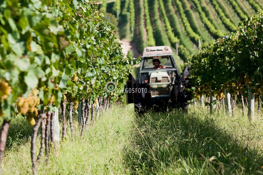 Tractor with Thermal Protection Control - TPC in vineyards / Trator utilizando Tratamento fitosanitario vento quenten nas videiras. Ano/Year 2010