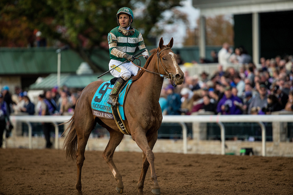 October 30, 2015:   Stellar Wind and Jockey Victor Espinoza after finishing second in the Breeders' Cup Distaff at Keeneland Race Track in Lexington, Kentucky. Evers/ESW/CSM