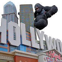 King Kong on Hollywood Wax Museum in Branson, Missouri<br /> Branson, Missouri, is a small town of about 11,000 people. Yet countless families converge to the 50+ attractions, theaters, museums, novelty restaurants and rides along &ldquo;The Strip&rdquo; (76 Country Boulevard) for wholesome fun. The list of stars that have performed in the &ldquo;Live Music Capital of the World&rdquo; reads like a who&rsquo;s who of entertainers. Speaking of celebrities, check out the wax versions of your favorite stars at the Hollywood Wax Museum. The attraction opened in 1985 with King Kong standing on the iconic Hollywood sign.