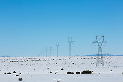 powerlines in the snow in New Mexico