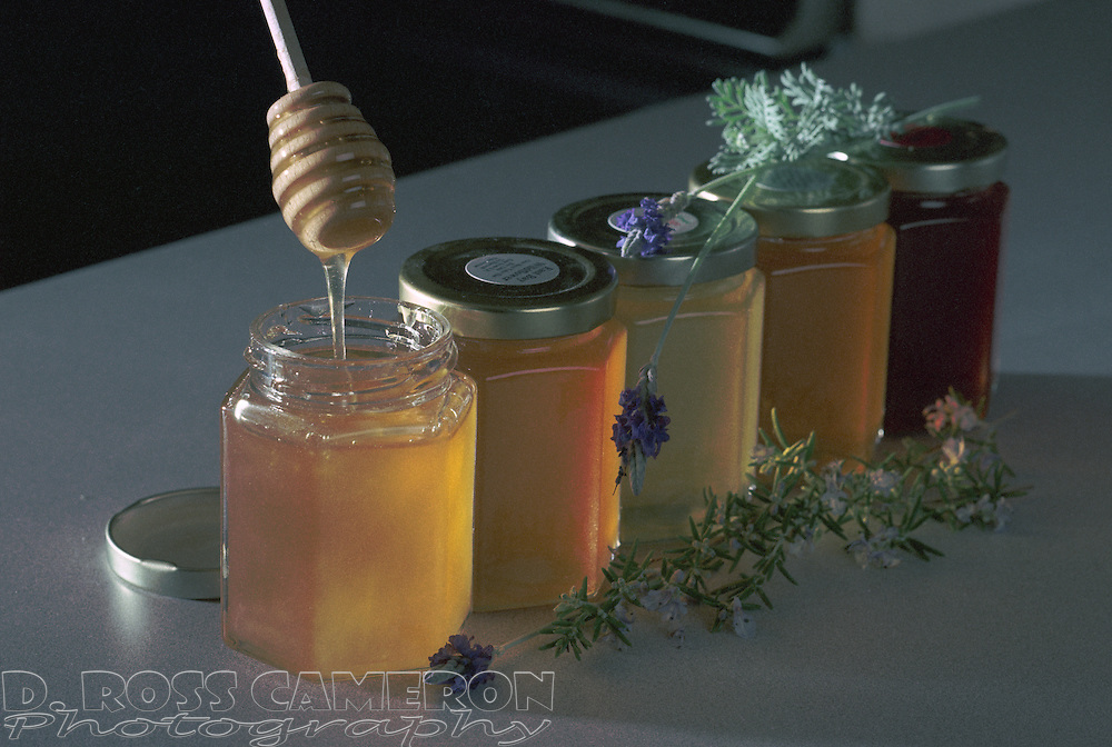Honey with different pollen sources are different colors, as illustrated by these five different varieties from Marshall's Farms in American Canyon, Calif., photographed Wednesday, Sept. 10, 2003 in Oakland, Calif. (Photo by D. Ross Cameron)