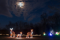 "Hamptonburgh, New York - The eighth annual ""Holiday Lights in Bloom"" display at the Orange County Arboretum on Dec. 10, 2016."