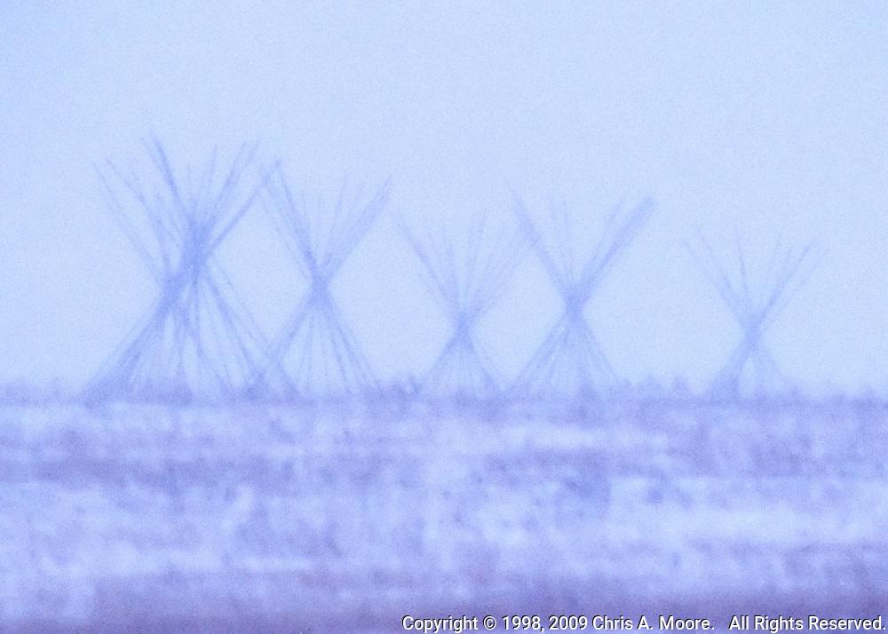 Ghostly Tipi Poles appear through a winter snow storm near Logan, Montana. January 1998