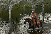 Pantanal cowboy 'Boiadeiro' in the Central Pantanal during the floods.<br /> Pantanal. Largest contiguous wetland system in the world. Mato Grosso do Sul Province. BRAZIL.  South America