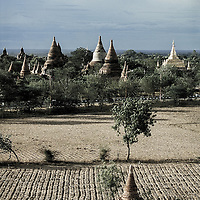 Bagan (Pagan), Myanmar - May 2006<br /> In an area of 40 km2 there are more than 2000 pagodas and temples still standing, the remains of Myanmar's architectural Golden Age. <br /> Bagan was Myanmar's capital for 230 years. <br /> Photo: Ezequiel Scagnetti