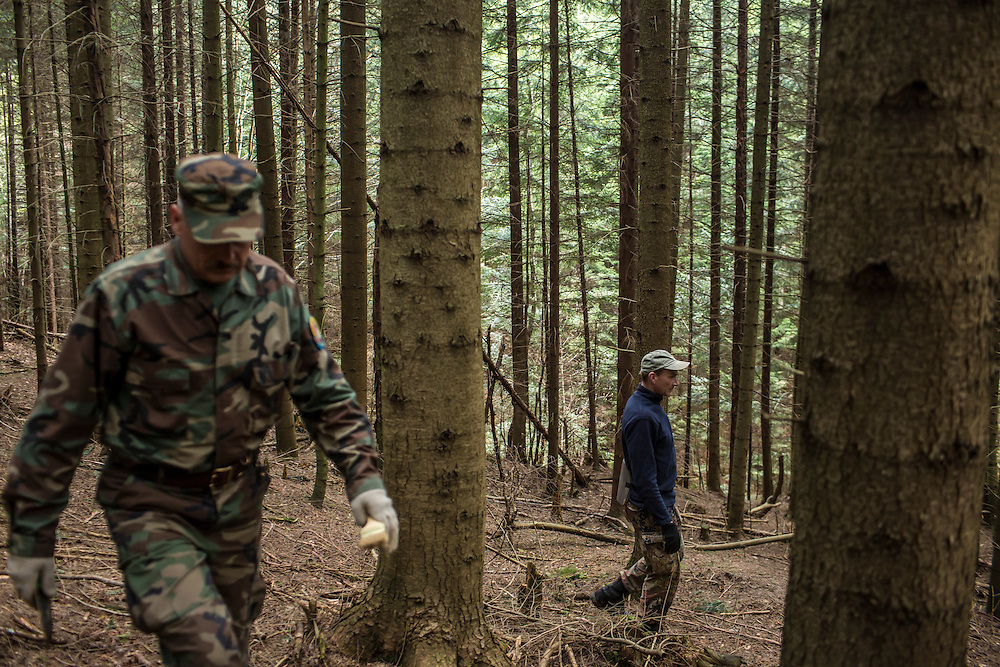SKOLE, UKRAINE - MAY 1, 2015: Volodymyr Kharchuk, left, and Ostap Kozak, deputy director and archivist of the organization Dolya, respectively, walk in the forest among World War II-era mass graves believed to contain the remains of Ukrainian partisans in Skole, Ukraine. Dolya was formed to excavate and repatriate remains from World War II, though its focus is often on locating the graves of Ukrainian partisans killed by Soviet forces. CREDIT: Brendan Hoffman for The New York Times